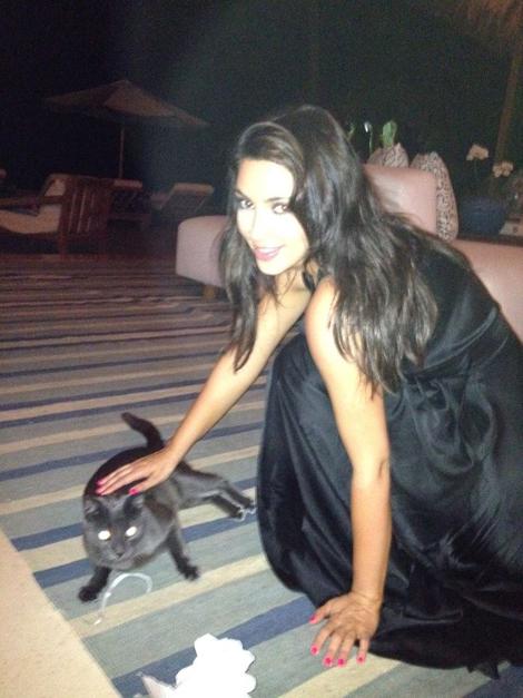 Joe-Francis-cat-kitten-Kim-Kardashian